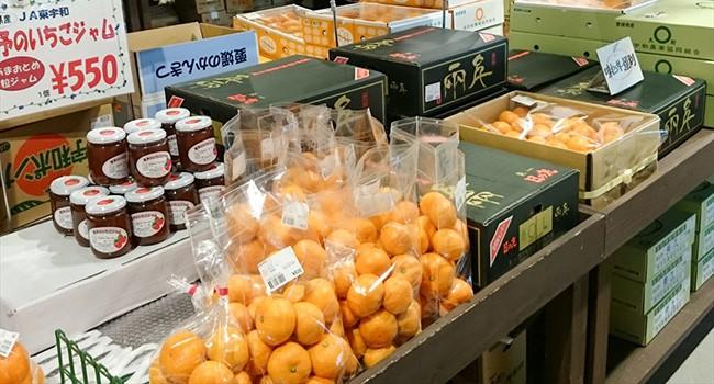 八幡浜産柑橘
