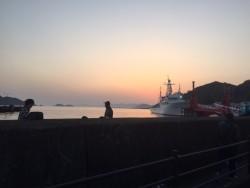3月23日(八幡浜の心和む風景)