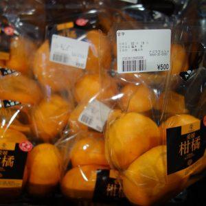 甘平、せとか、ポンカン… 柑橘、続々入荷中です