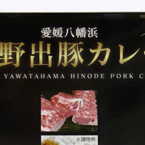 幻の豚を使ったご当地カレー「日野出豚カレー」