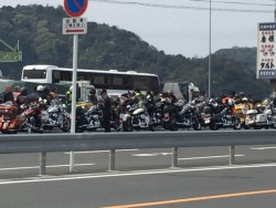 フェリー乗り場は大型バイクでいっぱい福岡方面に行かれるようです。