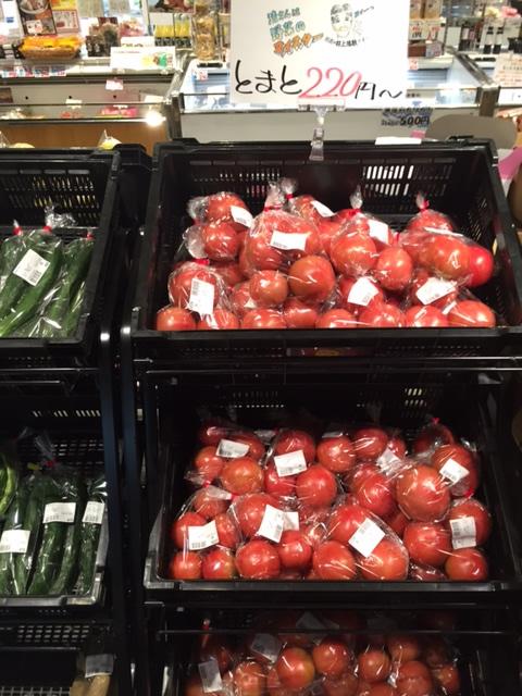 アゴラマルシェには、夏の草花や柑橘、野菜が入荷しています。