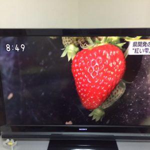 アゴラマルシェから愛媛のブランドイチゴ『紅い雫』のお知らせ