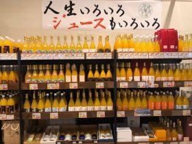 無添加柑橘ジュース2