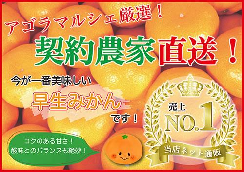 愛媛の柑橘・お土産の購入はアゴラマルシェ公式ネットショップで
