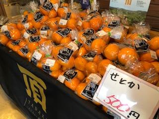 お買い得柑橘