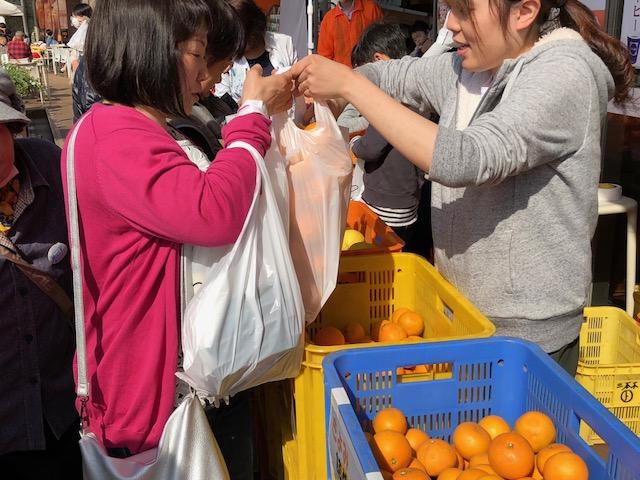 柑橘詰め放題4