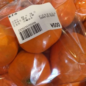 2月16日産直紹介 柑橘・野菜