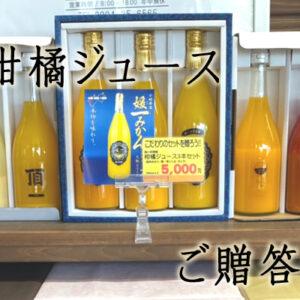 八幡浜産柑橘ジュースセット